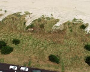 An excavator (top right) clears vegetation from notches carved into the sand dunes below John...
