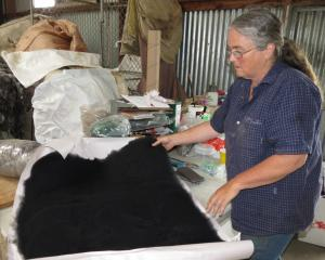 Barb Peel runs a fleece dyeing and carding business on the family farm near Raes Junction. Photo:...