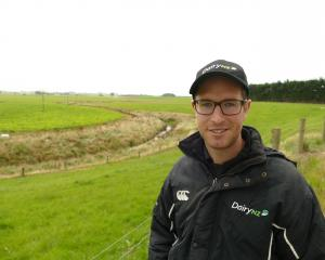 DairyNZ consultant Nathan Nelson at the Southern Dairy Hub at Wallacetown. Photo: Ken Muir
