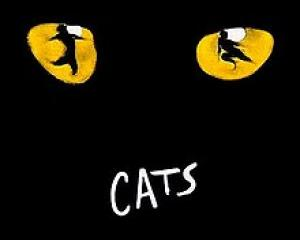 Dunedin had one show in the 2019 Aotearoa Tour of Andrew Lloyd Webber's 'Cats'. PHOTO: WIKIPEDIA