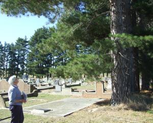 Omakau resident Penny Sinnamon takes a final glance at one of the pine trees at Omakau's Blacks...