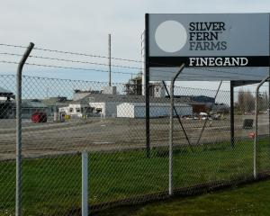 Silver Fern Farms' Finegand plant. PHOTO: RICHARD DAVISON