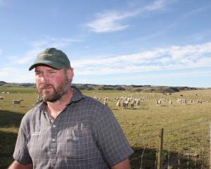 Clydevale farmer Hamish Wilson has been feeding out to ewes for the past six weeks. PHOTO: JOHN...