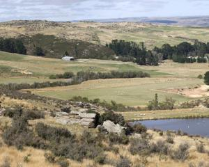 Australian-owned Plaman bought a diatomite mine at Foulden Hill near Middlemarch in 2015 for more...