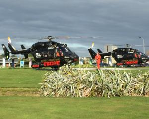 The trio were flown to Invercargill on Otago Rescue Helicopters. Photo: Giordano Stolley