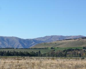 The Queenstown Lakes District Council has said  homes proposed to be built in this paddock near...
