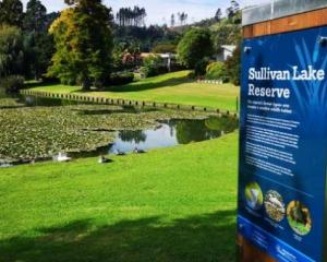 The incident happened near Sullivan Lake in Whakatāne. Photo via NZ Herald