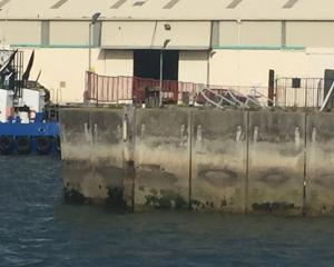 Damage dwharves in the upper harbour are something the public want repaired. PHOTO: HILARY CALVERT