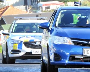 The silhouette of a dog that killed a cat in Dunedin yesterday can be seen in this car. Photo:...