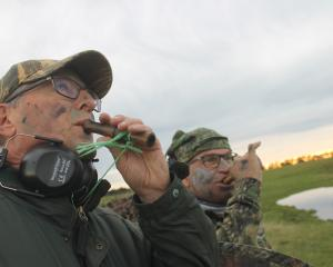 Tony Chadderton (left) and John Faul, both of Invercargill, attempt to entice ducks on the...