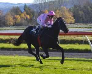 Jockey Kylie Williams wins her first race back from an injury layoff with Black Label at Wingauti...