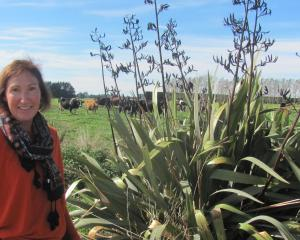 Tricia Macfarlane and some of the established plantings around the farm.