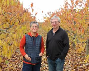 Summerfruit New Zealand chief executive Marie Dawkins and board chairman Tim Jones, who is also...