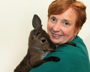 Rae Campbell with rescued kangaroo Faith. Photos: Supplied