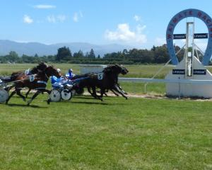 The Waimate Racing Club has not been issued a licence to hold a meeting at its home course after...