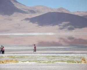 Laguna Colorada, created in 1973 mainly to protect flamingo and vicuna, covers around 7.5...