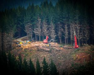 Contractors at work on Dunedin City Council-owned City Forests plantation near Dunedin in mid...