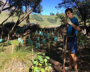 Gareth Harcombe, a year 13 Envirogroup member from Wakatipu High School, has been involved in...