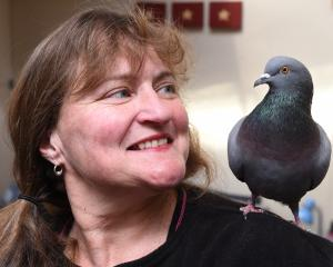 Macandrew Bay woman Shelley Davies with her pet pigeon. Photo: Gregor Richardson