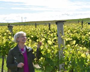 Ata Mara co-owner Janiene Bayliss was delighted when the vineyard's 2015 pinot noir won a gold...