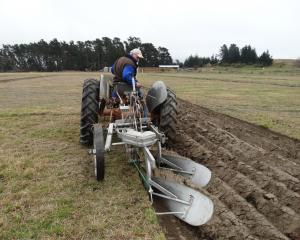 Retired Gore farmer Alistair Rutherford competes in the Upper Clutha ploughing competitions at...