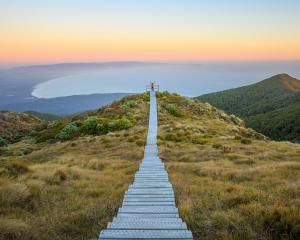 A lookout on the Hump Ridge Track. Photo: Department of Conservations