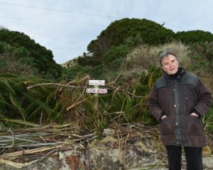 Aramoana Conservation Charitable Trust member Adrian Hall stands in front of piles of vegetation...
