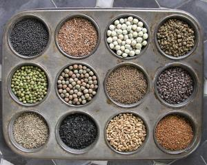 An assortment of microgreen seeds.