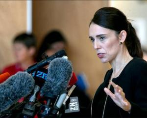 Prime Minister Jacinda Ardern announced a ban on MSSAs after the Christchurch terror attacks....