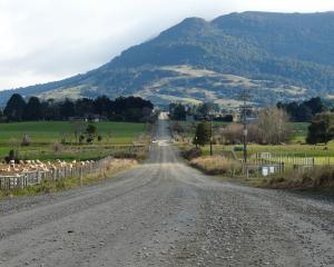 Clutha District Council has amended heavy vehicle rules for winter use of Tahakopa Valley Rd in...
