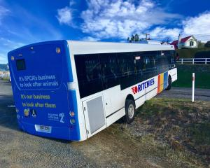 A bus became wedged on the side of the road in St Leonards this afternoon. Photo: Supplied