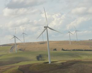 The Mahinerangi wind farm, in the Clutha district, is the only significant wind power generation...