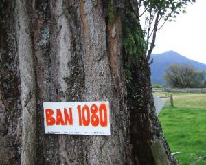 An anti-1080 sign in Makarora. Photo: Allied Press