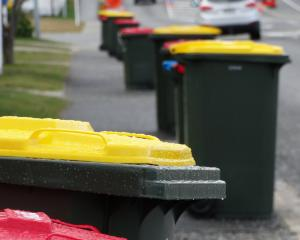 A colourful array of new plastic bins in Aubrey St, Wanaka, on Tuesday. Photo: Mark Price
