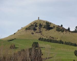 Panoramic views of Palmerston and the surrounding district draw many walkers to the Puketapu...