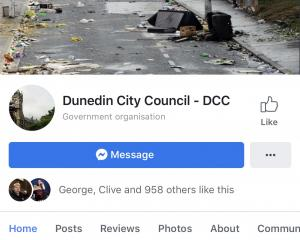 The fake DCC Facebook page. Photo: Supplied