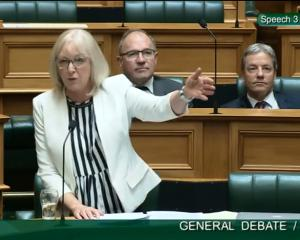 Jacqui Dean in full flight.PHOTO: PARLIAMENT TV