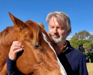 Sam Neill hanging out with his horse on his Queenstown Farm. Photo / @TwoPaddocks Twitter