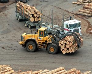 Logs arrive at Port Otago ready to be shipped to Asian markets. Photo: Allied Press Files