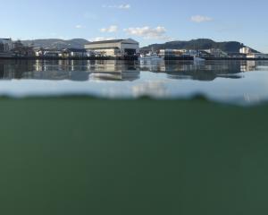 Steamer Basin. Photo: Gerard O'Brien