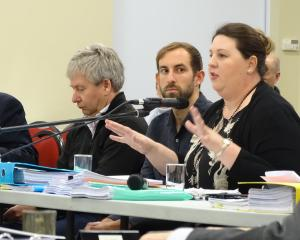 Horticulture New Zealand South Island environmental adviser Rachel McClung gives evidence at the...
