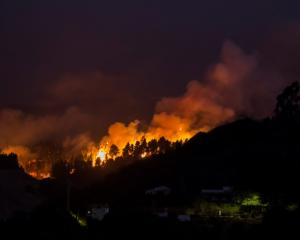 The fire rages in the village of Moya, in the Canary Island of Gran Canaria. Photo: Reuters