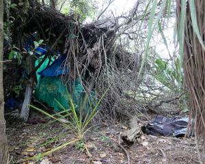 "Branches and scraps of tarpaulin form what appears to be a homeless person's now-abandoned ""bivvy..."