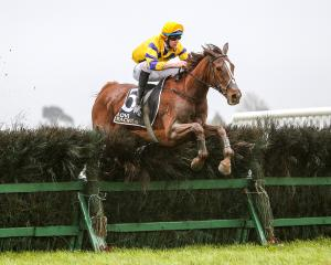 It's A Wonder clears a fence in fine style as he heads to victory in the Grand National...