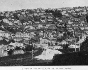 A view of the sunny slope of Kaikorai Valley. — Otago Witness, 20.8.1919. COPIES OF PICTURE...