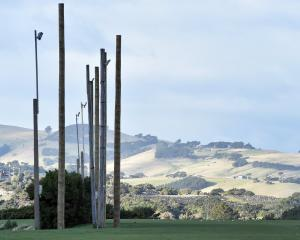 New light posts have been installed at Kettle Park in Dunedin as part of a citywide project to...