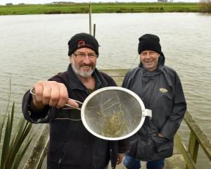 Invercargill mates David King (left) and Graham Hicks added another 227g by the end of the day to...
