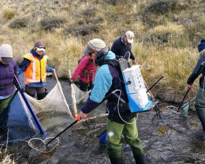 A team from Environment Canterbury, the Department of Conservation and the New Zealand Defence...