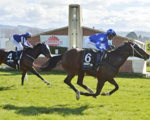 Bluey's Chance wins race 1 from Miss Brahmos at Wingatui yesterday. PHOTO: GERARD O'BRIEN