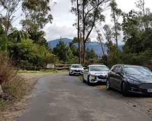Police cars near the scene where a body was discovered. Photo: Ryan Gray via NZME.